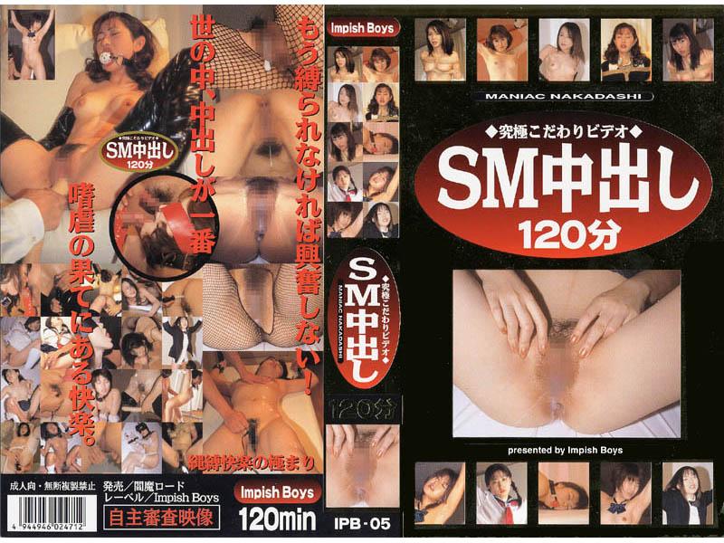 ◆究極こだわりビデオ◆SM中出し120分(2) ipb-005